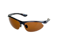 93-SPO-014B Солнцезащитные очки Robinson
